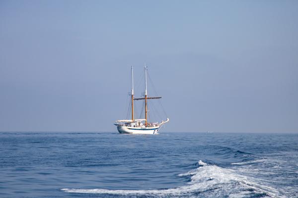 Adalara Tekne Turları, Hırvatistan