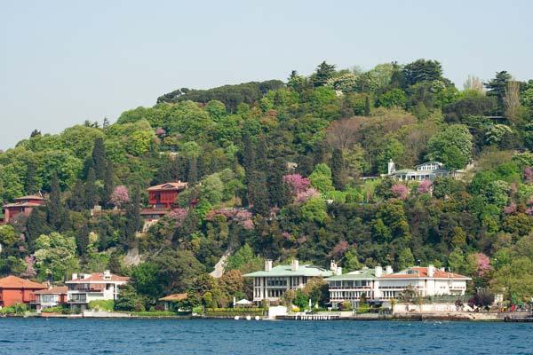 İstanbul erguvan rotası